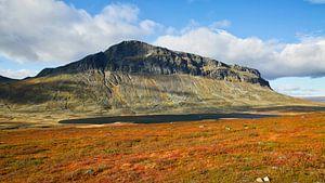 Noors berg landschap van