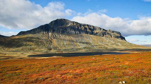 Noors berg landschap