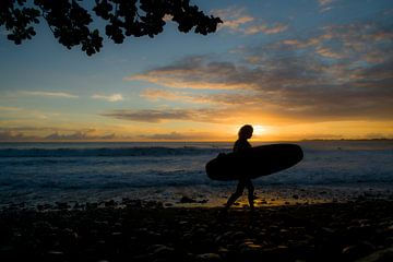 Surfing girl in Hawaii