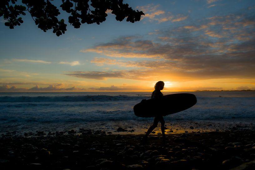 Surfing girl in Hawaii van Jim De Sitter