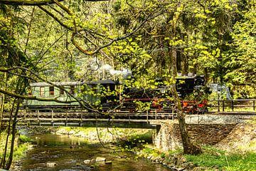 Museumsbahn Erzgebirge Preßnitztalbahn von Johnny Flash