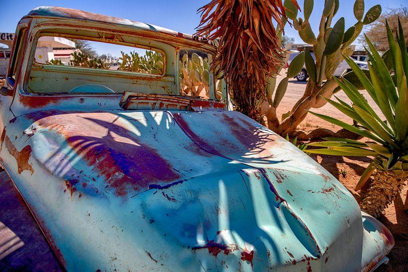 Tegen de palm geparkeerd van Rene Siebring