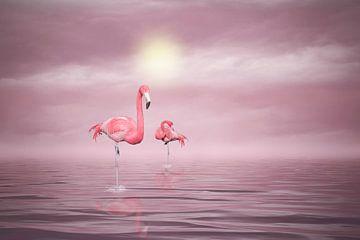 Flamingos van Ursula Di Chito