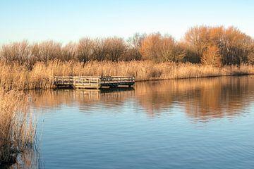 Zondagmorgen glorie bij het Valkenburgse meer von Loes Huijnen