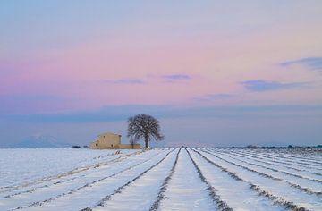 L'hiver est là von Georges Rudolph