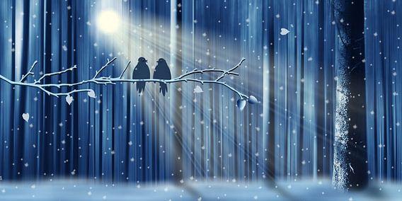 Winterliebe von Monika Jüngling