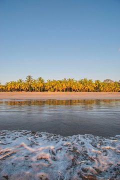 Strand met palmbomen Costa Rica van Bianca Kramer