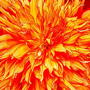 Brandende liefde van Tim Abeln