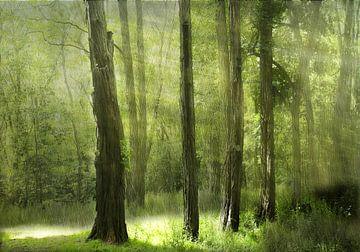 groen licht van Henk Speksnijder