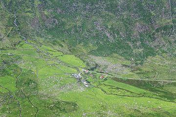 Schapenboerderij in de vallei van Nathan Marcusse