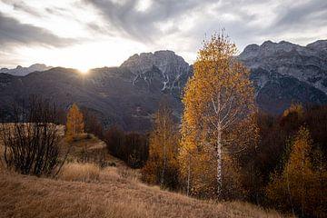 Herfst in Albanie van Ellis Peeters