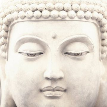Buddha von Lars van de Goor