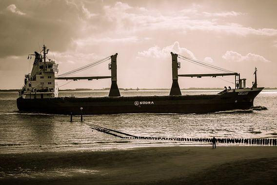 Schip vaart vlak langs de kant van het strand van Vlissingen (Zeeland)