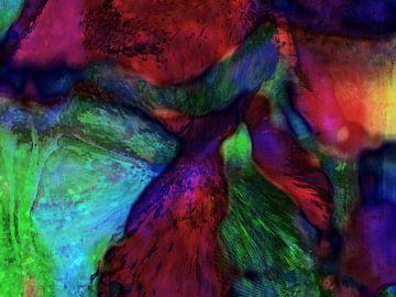 abstractie222 van Peter Norden