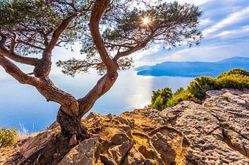 La Corniche des Crêtes sur la Côte d'Azur en France sur Werner Dieterich