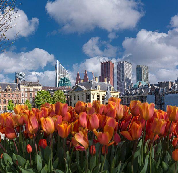 Hofvijver, Het Binnenhof, De Resident kantoren, Den Haag, , Zuid-Holland, Nederland van Rene van der Meer