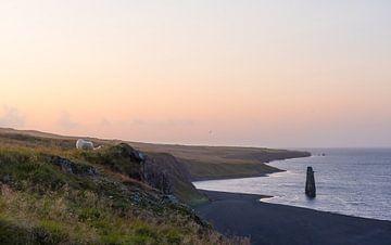 Ciel islandais coloré sur la côte nord. sur Thijs van den Burg