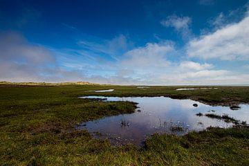 Ameland, Landschaft von Nynke Altenburg