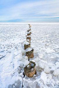 Winter aan het IJsselmeer 2021 van Etienne Hessels