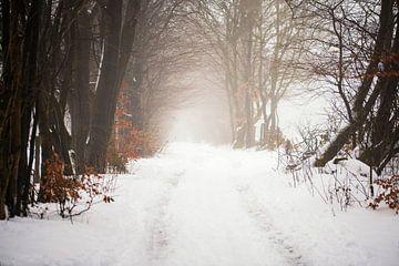 winters landschap van Kristof Ven