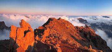 Vulkanlandschaft bei Sonnenuntergang, La Palma, Kanarische Inseln, Spanien von Markus Lange
