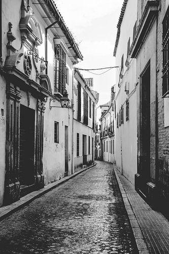 De witte dorpen van Andalusië, Spanje