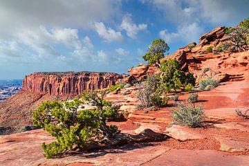 Eindrucksvollen Landschaft des Canyonlands National Park, Utah von Rietje Bulthuis