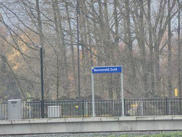 Station Barneveld Zuid van Wilbert Van Veldhuizen