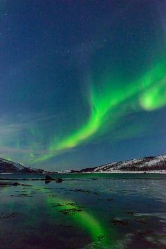 Aurora Northern Polar Licht im Nachthimmel über Nord-Norwegen von Sjoerd van der Wal