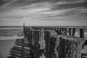zeeländische küste mit buhnen in schwarz-weiß von anne droogsma