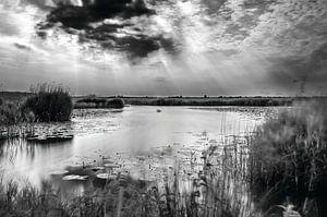 Nederlands landschap, Eempolder in Zwart/Wit.