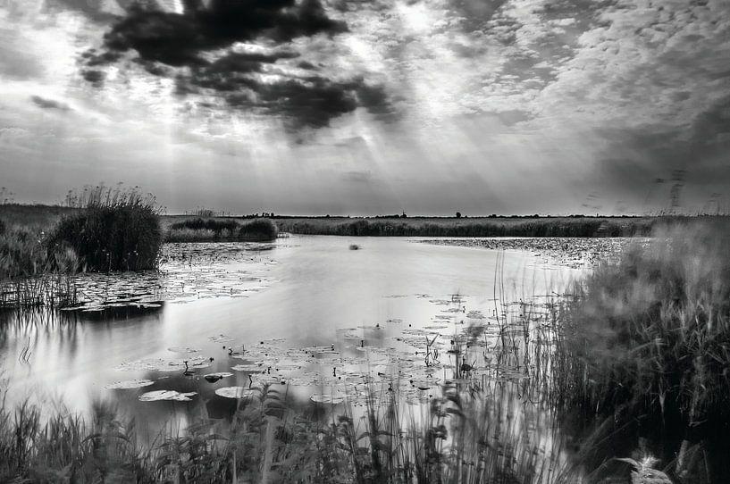 Nederlands landschap, Eempolder in Zwart/Wit. van Mark de Weger