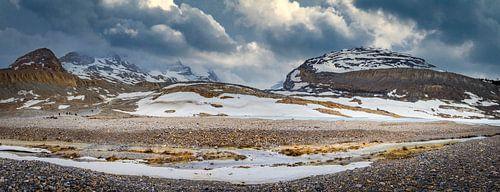 Panorama van de Athabasca gletsjer, Canada