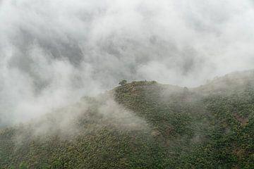 Mystische Bergansichten von Robert de Boer