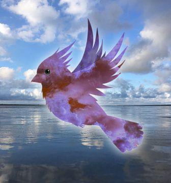 Reflexion eines Kardinalvogels von Bianca Wisseloo