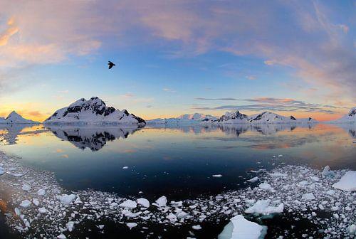 Antarctica Paradise Bay