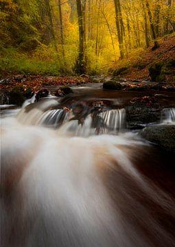 Petite cascade et couleurs d'automne en Allemagne sur Jos Pannekoek