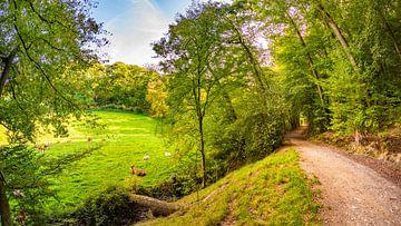 Groen landschap met koeien op een weide van Günter Albers