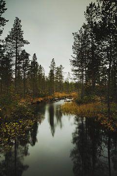 Zweden 004 van