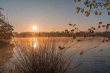 Mist in de ochtend op de Allersee van Marc-Sven Kirsch