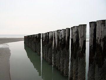 Palen op het strand von Thijs Schouten