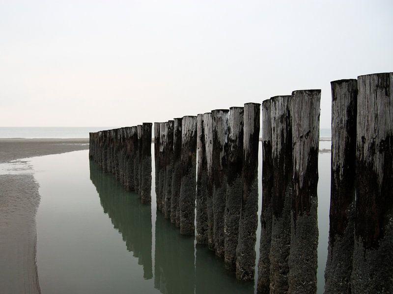 Palen op het strand van Thijs Schouten