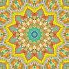 Mandala Style 81 van Marion Tenbergen thumbnail
