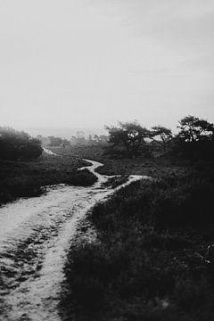 De Lemelerberg bij Lemele, een stoer zwartwit landschap | Outdoor Photography van Holly Klein Oonk