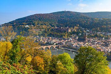 Heidelberg aan de rivier de Neckar tijdens een mooie herfstdag van Sjoerd van der Wal