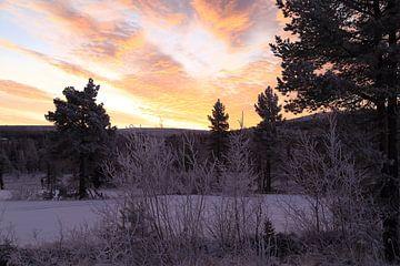 winterse zonsopkomst in Zweden van Carin van der Aa