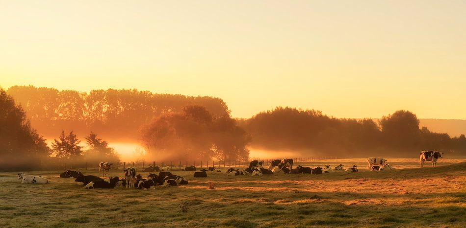 Zonsopkomst in Zuid-Limburg