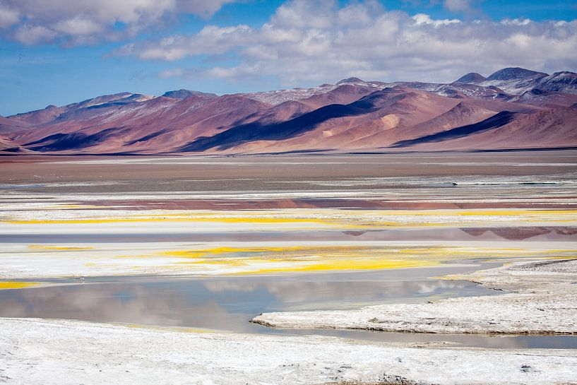 Salar De Atacama 2 van Eriks Photoshop by Erik Heuver