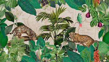 Luipaarden in de jungle van Andrea Haase