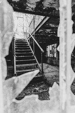Trap in de oude serre van Peter Deschepper